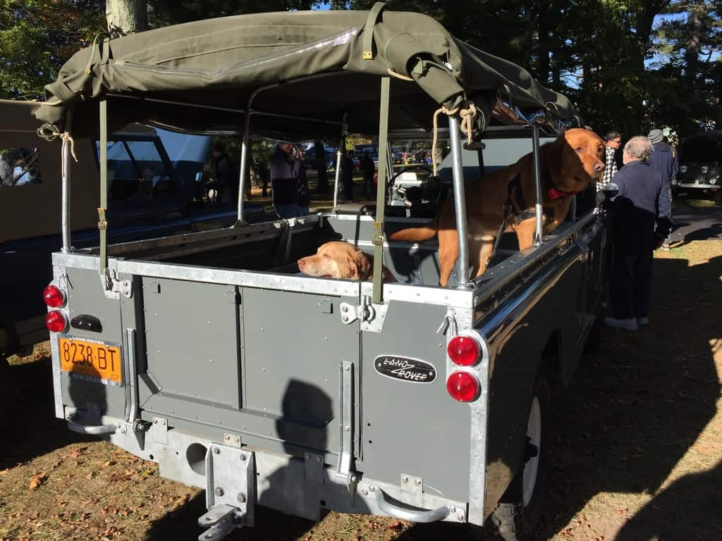 John Pavone's beautiful 1962 Land Rover